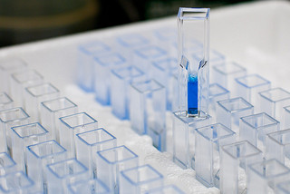 How to Calculate Protein Concentration Using The Bradford Assay