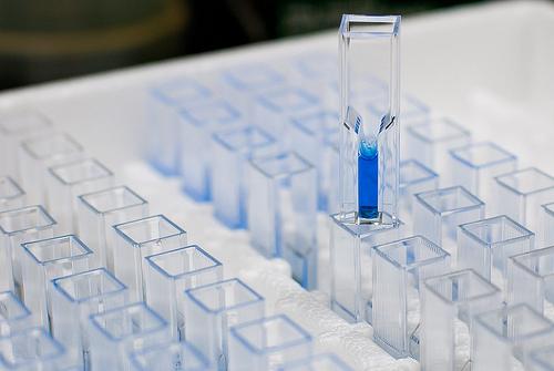 protein concentration determination, protein concentration, protein assays