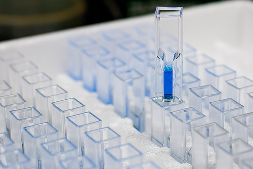 protein concentration determination, protein concentration, protein assays