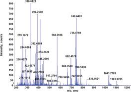 Spotting Fragmentation Patterns When Using Mass Spectrometry
