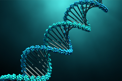 The Basics of Genomic DNA Extraction